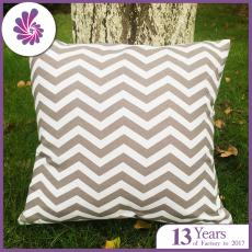 Chevron Cushion Covers